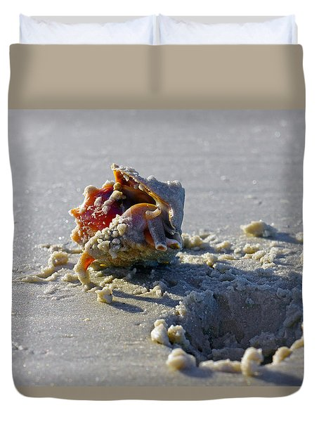 Fighting Conch On The Beach Duvet Cover