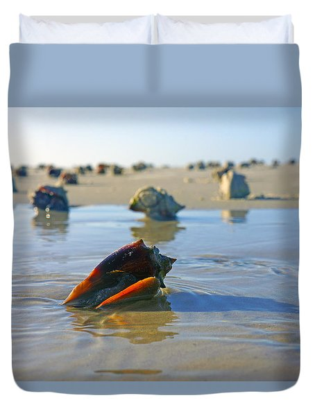 Fighting Conchs On The Sandbar Duvet Cover