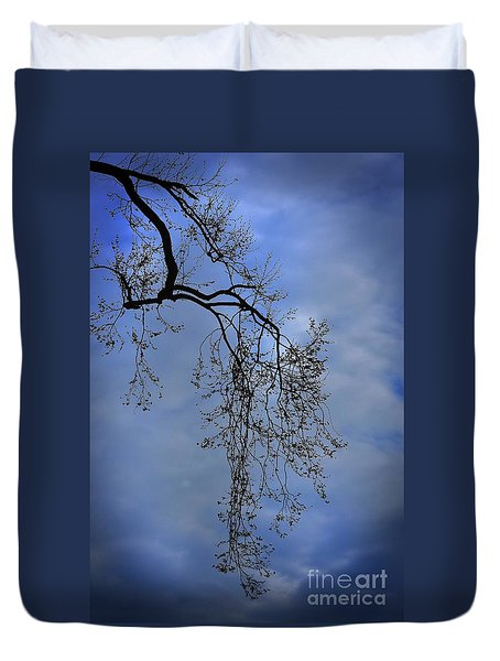 Duvet Cover featuring the photograph Filigree From On High by Skip Willits