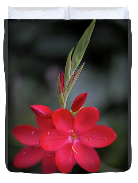Fire Lily 2 Duvet Cover