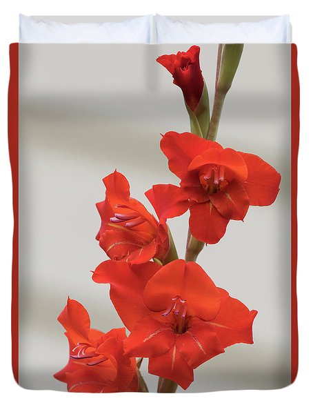Duvet Cover featuring the photograph Fire Red Gladiolas by Angie Vogel