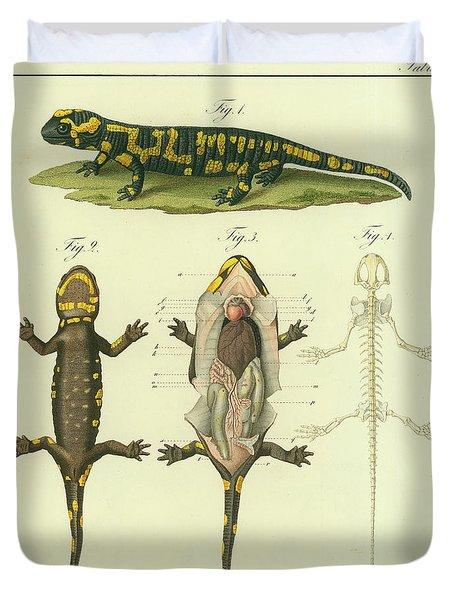 Fire Salamander Anatomy Duvet Cover