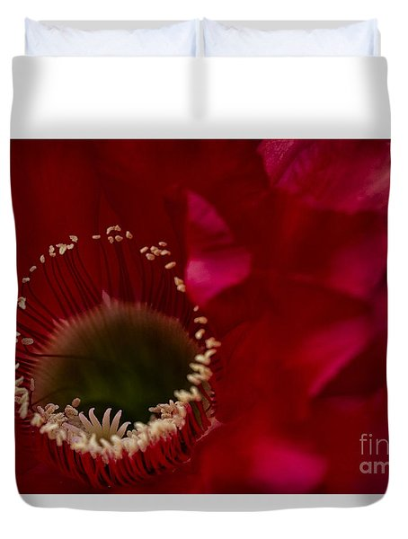 Firelight Blooms Duvet Cover by Ruth Jolly