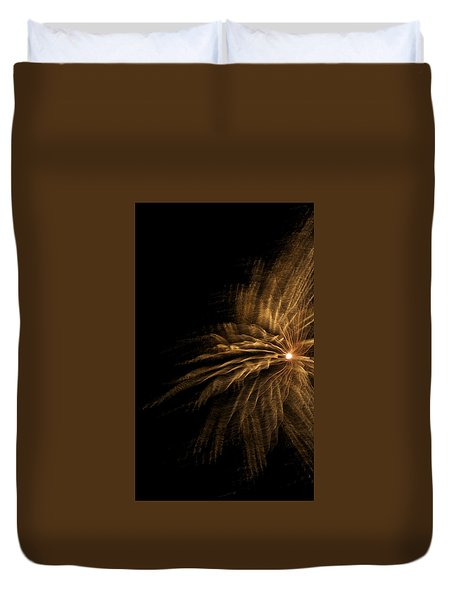 Fireworks 5 Duvet Cover by Ellery Russell