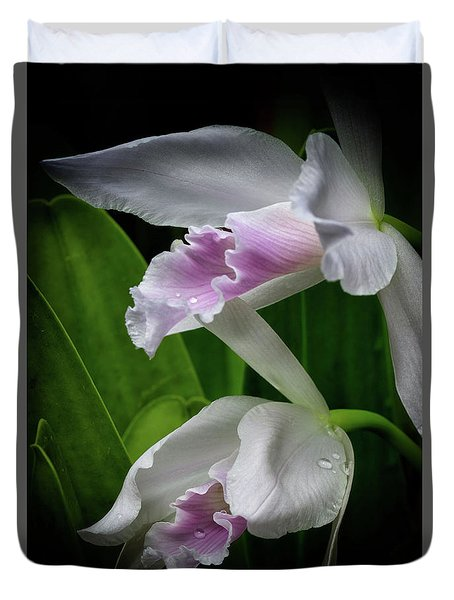 First Orchid At The Conservatory Of Flowers Duvet Cover