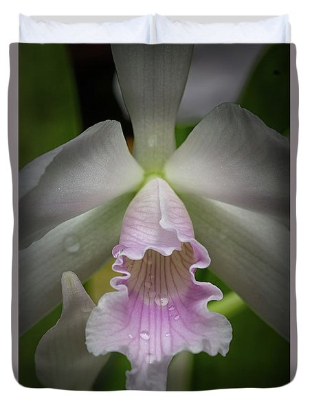 First Orchid Straight On Duvet Cover