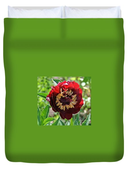 First Peony Bloom Duvet Cover by Marsha Heiken