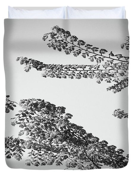 First Signs Of Spring II Duvet Cover by DigiArt Diaries by Vicky B Fuller