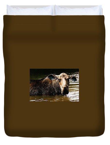 First West Branch Pond Moose Duvet Cover