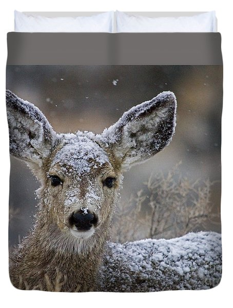First Winter-signed Duvet Cover