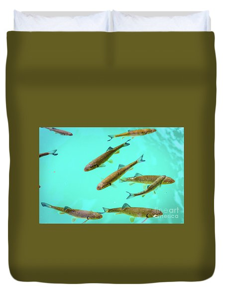 Fish School In Turquoise Lake - Plitvice Lakes National Park, Croatia Duvet Cover