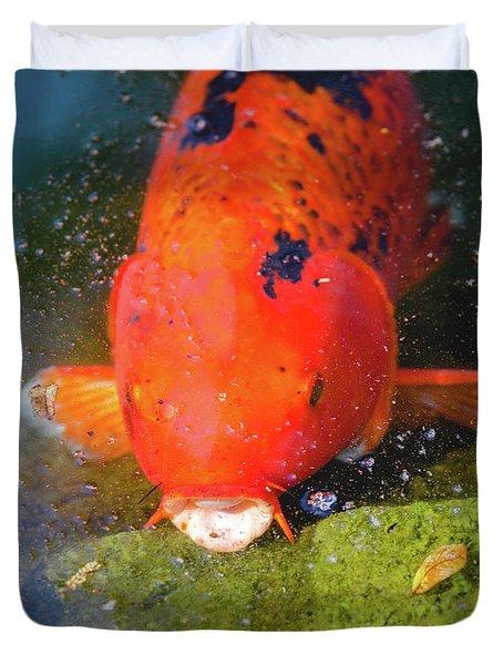 Duvet Cover featuring the photograph Fish Surprise by Raphael Lopez