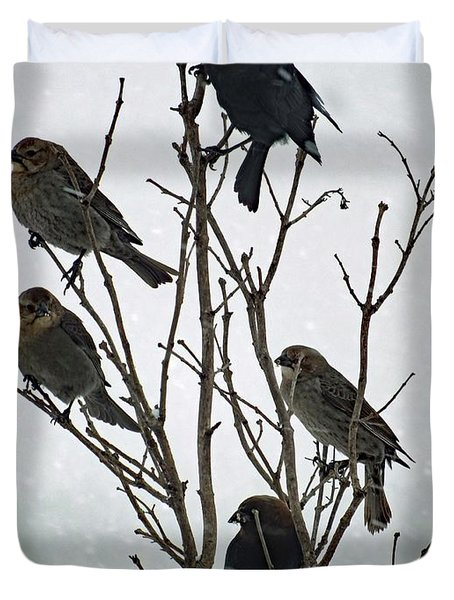 Five Cowbirds Sitting In A Tree Duvet Cover