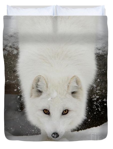 Fixated Duvet Cover
