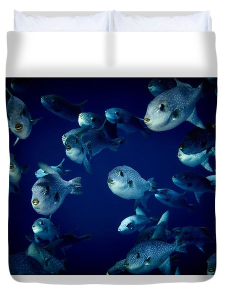 Fla-150811-nd800e-26096-color Duvet Cover