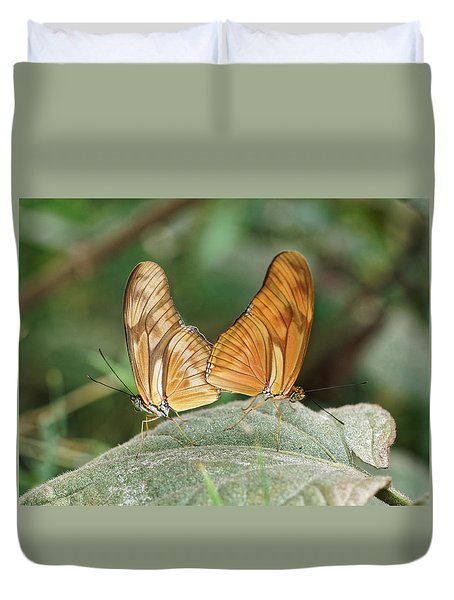 Duvet Cover featuring the photograph Flambeau Butterfly - 2 by Paul Gulliver