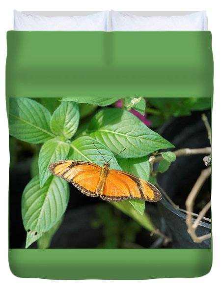 Duvet Cover featuring the photograph Flambeau Butterfly by Paul Gulliver