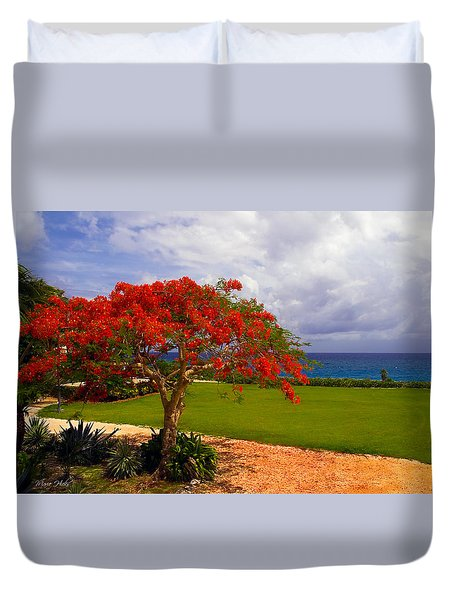 Flamboyant Tree In Grand Cayman Duvet Cover by Marie Hicks