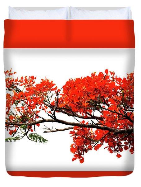 Flamboyant Duvet Cover
