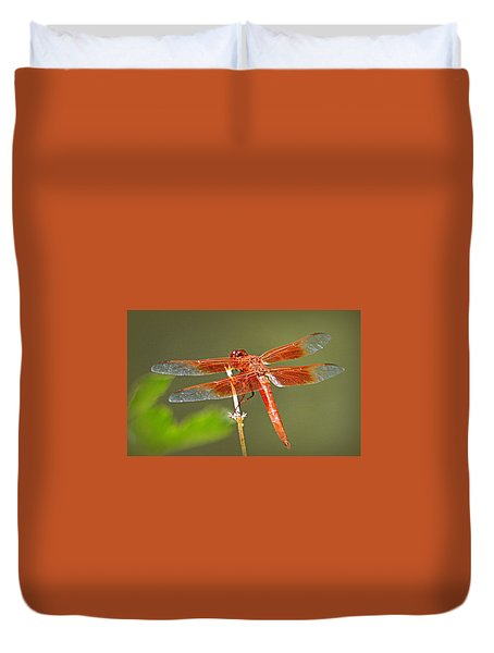 Duvet Cover featuring the photograph Flame Skimmer by AJ Schibig