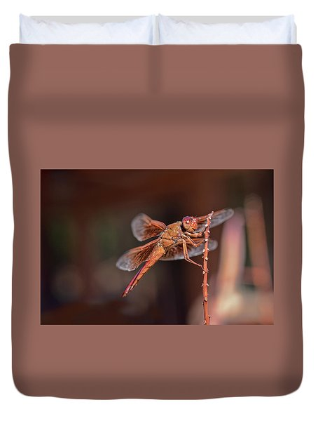 Duvet Cover featuring the photograph Flame Skimmer by Dan McManus