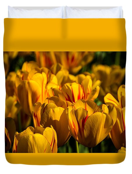 Flame Tulips Duvet Cover