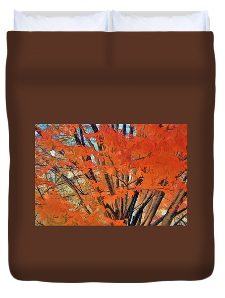 Flaming Fall Foliage Duvet Cover by Terry Cork