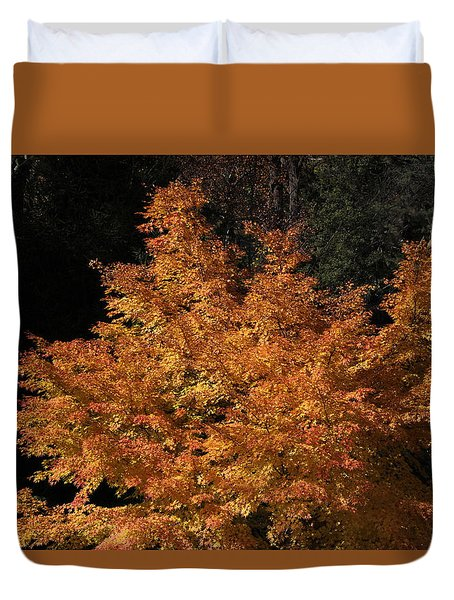 Duvet Cover featuring the photograph Flaming Tree Brush by Deborah  Crew-Johnson