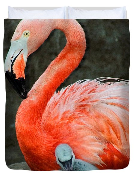 Flamingo And Baby Duvet Cover