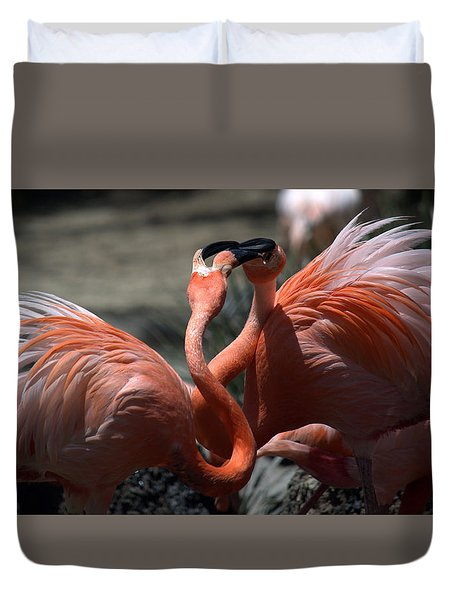 Flamingo Face Off Duvet Cover by Lori Seaman