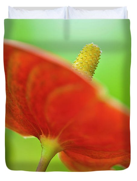 Flamingo Flower 2 Duvet Cover by Heiko Koehrer-Wagner