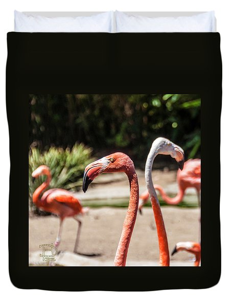 Flamingo Pair Duvet Cover