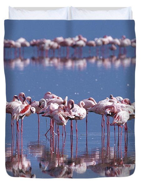 Flamingo Reflection - Lake Nakuru Duvet Cover