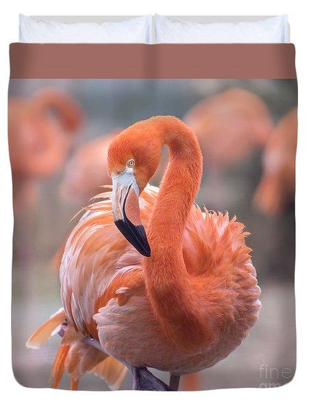 Flamingo, The Orange Beauty Duvet Cover