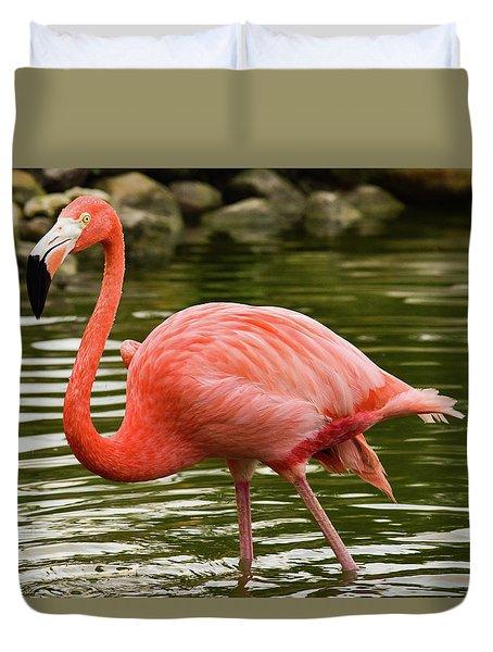 Flamingo Wades Duvet Cover