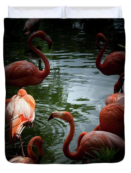 Duvet Cover featuring the photograph Flamingos by Eric Christopher Jackson