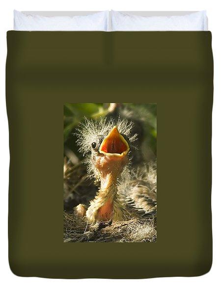 Fledgling Yellow Warbler Duvet Cover
