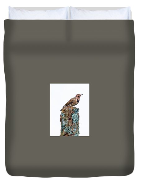 Flicker Perched On Tree Duvet Cover