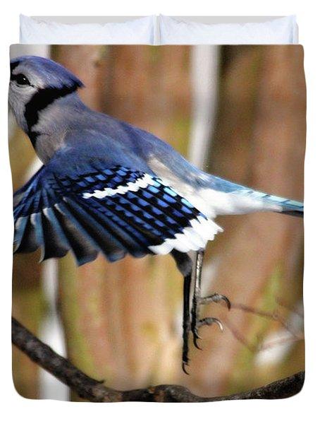 Flight Of The Blue Jay Duvet Cover