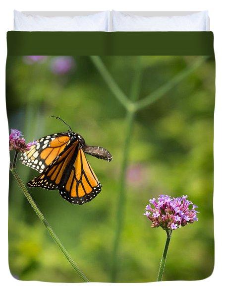Flight Of The Monarch 2 Duvet Cover