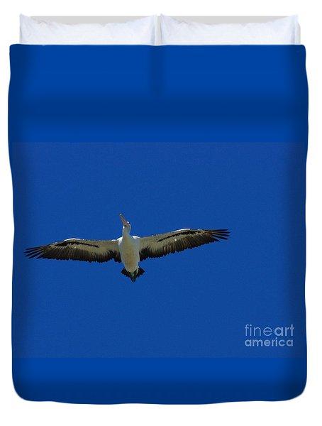 Flight Of The Pelican Duvet Cover by Blair Stuart