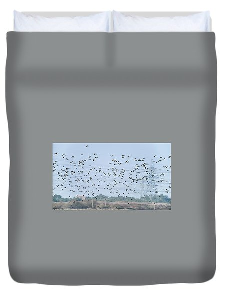 Flock Of Beautiful Migratory Lapwing Birds In Clear Winter Sky Duvet Cover