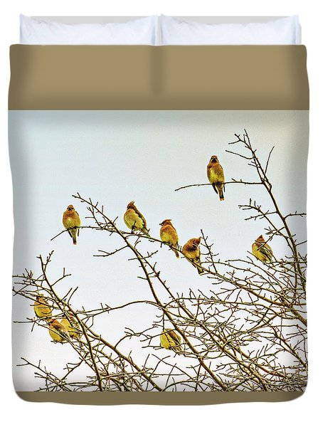 Flock Of Cedar Waxwings  Duvet Cover