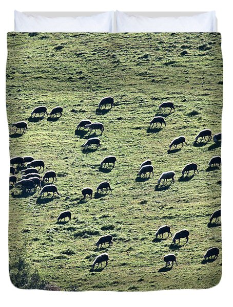 Flock Of Sheep Duvet Cover