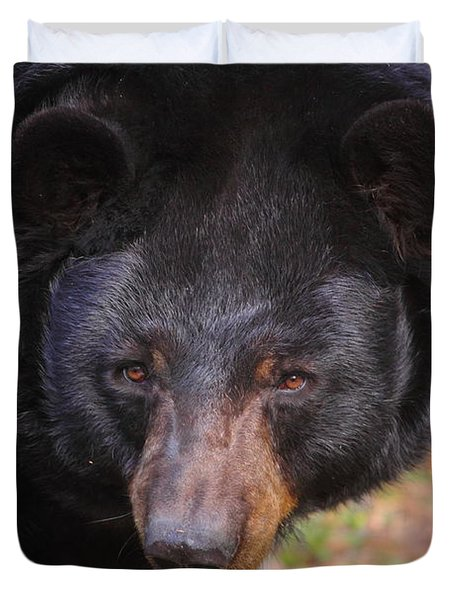 Florida Black Bear Duvet Cover
