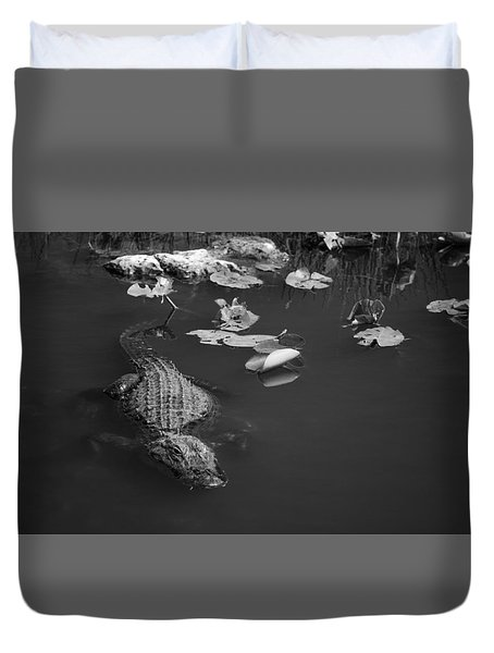 Duvet Cover featuring the photograph Florida Gator by Jason Moynihan