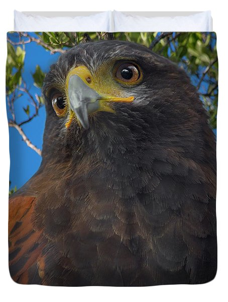 Florida Keys Golden Eagle Duvet Cover