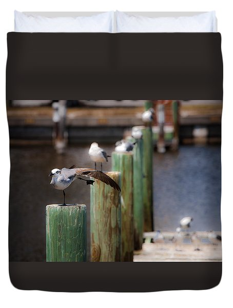 Duvet Cover featuring the photograph Florida Seagull Playing by Jason Moynihan