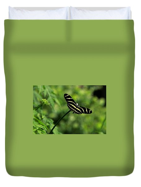 Florida State Butterfly Duvet Cover