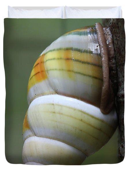 Florida Tree Snail Duvet Cover